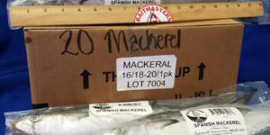 Mackerel - Spanish
