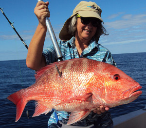 American Red Snapper on AFB Cigar Minnows