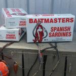 5300_Sardines-Baitmasters_700sq