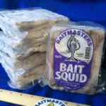 5504-Bait-Squid_700sq