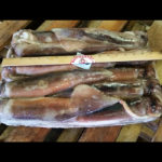 5552-500-800-gram-Argentina-Squid_700sq