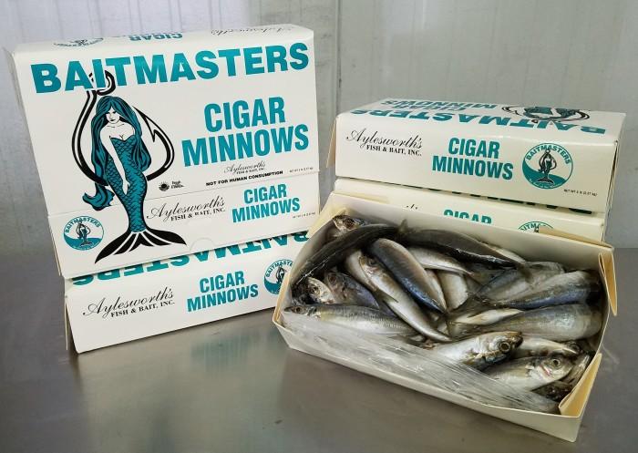 1400 – Cigar Minnows, 5lb BAITMASTERS – Aylesworth's Fish