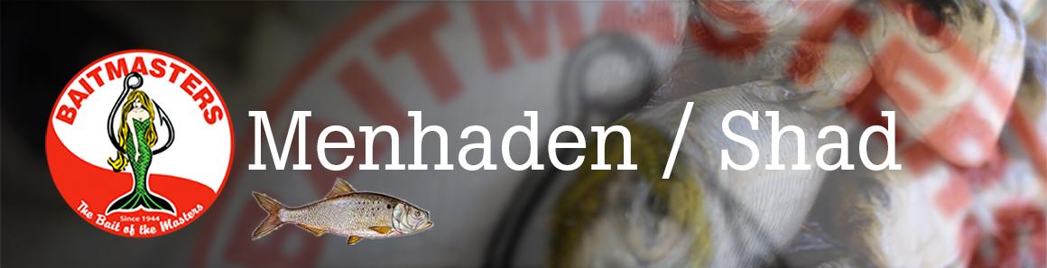 Menhaden/Shad – Aylesworth's Fish and Bait